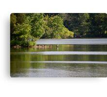 Green Lane Reservoir - Red Hill - Pennsylvania USA Canvas Print