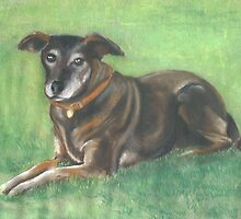Penny in pastel by Woodie