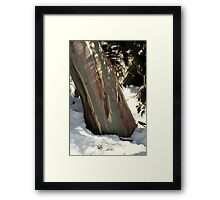Weekend at Thredbo - Snowy Gum Framed Print