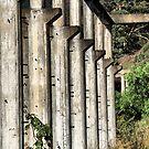 Shale Work Ruins 2 - Glen Davis NSW Australia by Bev Woodman