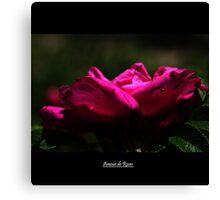 Amour de Roses Canvas Print