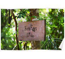 Farm Eggs Poster