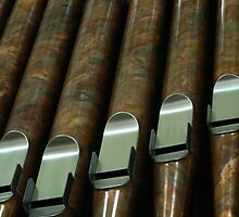 the organ pipes at Saint Meinrad Archabbey by Hope A. Burger