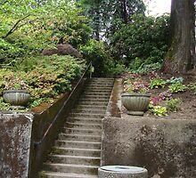 Stairs to the Mansion by twyatt