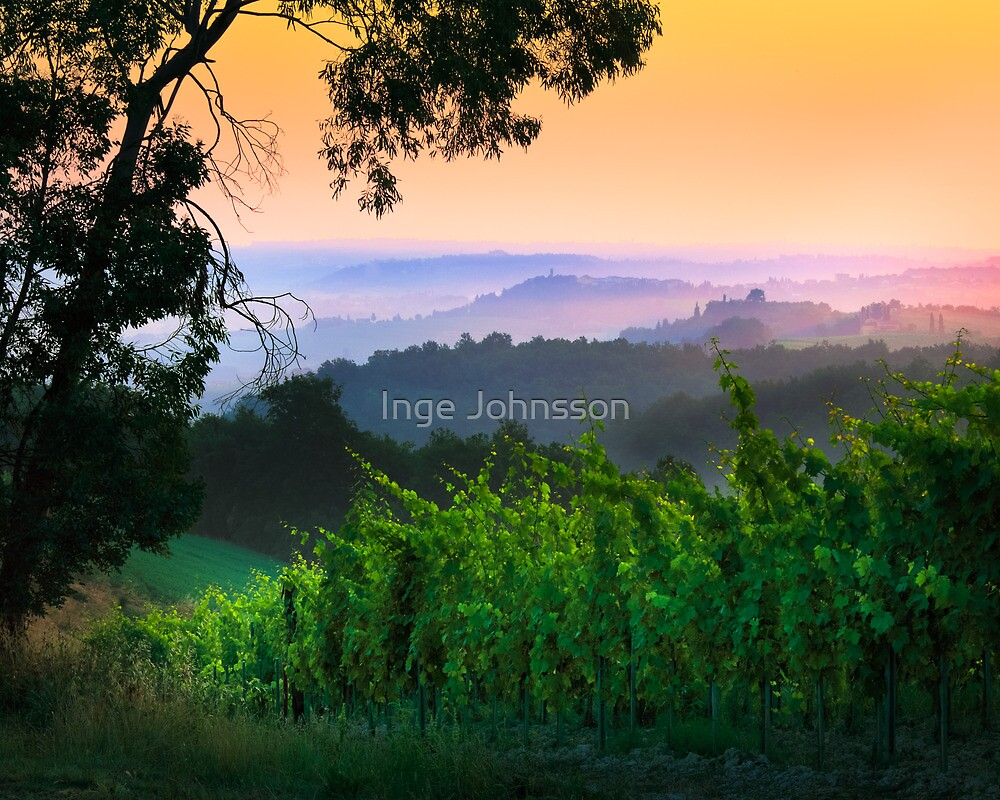 San Gimignano Hills #1 by Inge Johnsson