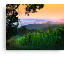 San Gimignano Hills #1 Canvas Print