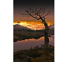 Sunset - Tierra del Fuego National Park, Argentina Photographic Print