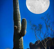 Western Moon by Richard Gaffney