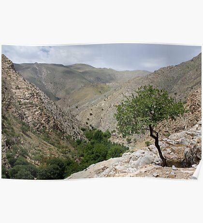 Sentab Valley Poster