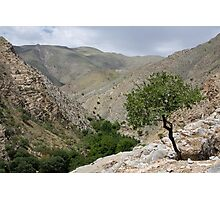 Sentab Valley Photographic Print