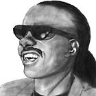 The Wonder of Stevie Wonder by Haley Wolcott