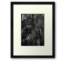 tree fossil.... ancient crow birds Framed Print