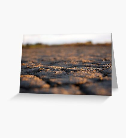 Parched land Greeting Card