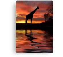 By the Waterhole Canvas Print
