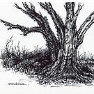 Ancient Oak Sketch by Margaret Stockdale