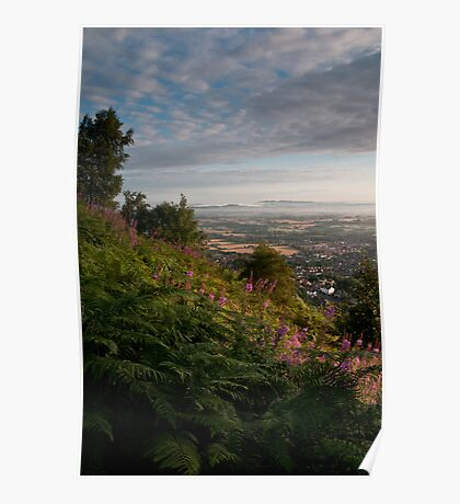 Dawn in Worcestershire Poster