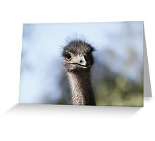 Nosey parker Greeting Card