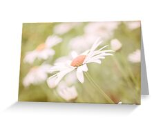 A Gentle Sway Greeting Card