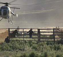Wild Horse Roundup At Triple B by Arla M. Ruggles