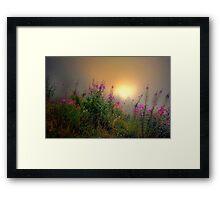 Cascades Fog and Fireweed Framed Print