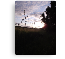 Sunset over cross-shaped grass Canvas Print