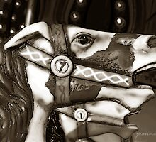 Carousel 58 by Joanne Mariol