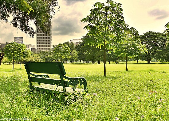 A Spot - Railroad Park Bangkok , HDR Urban Nature by vanyahaheights
