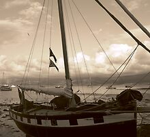 Of Piracy and Lost Treasure ... by Graham Povey