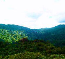 El Yunque by BrittanyJade