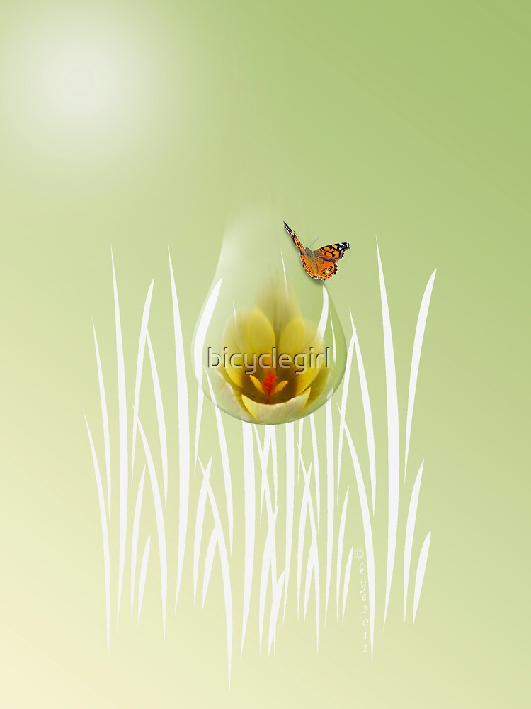 Butterfly with Crocus by bicyclegirl