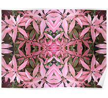 flower collage in pink Poster