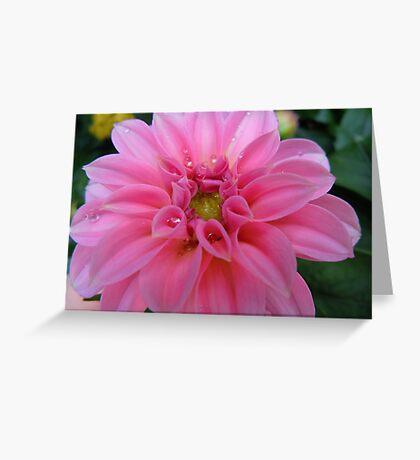 Diamonds in Pink Greeting Card
