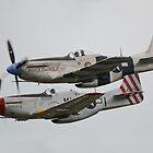 North American P-51 Mustangs by Nigel Bangert