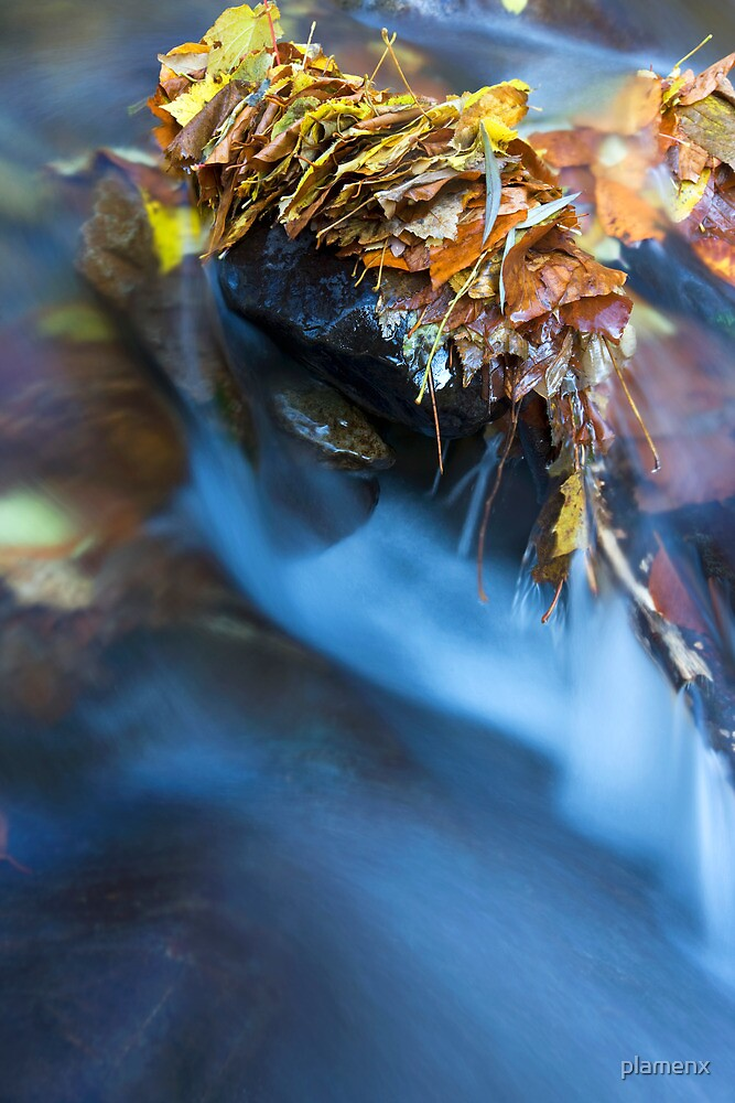 river autumn by plamenx