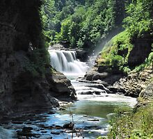 """ Lower Falls - Letchworth State Park, NY "" by DeucePhotog"