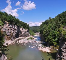 """ Gorge - Letchworth State Park, NY "" by DeucePhotog"