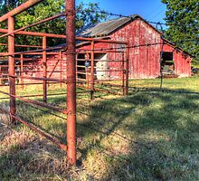 Red Shed & Rusty Iron Fence by Terence Russell