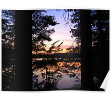 Sunset thru the Pines Poster