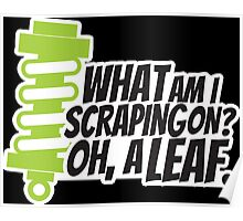 What am I scraping on? 2 Poster