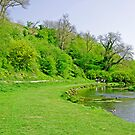 Lathkill Dale near to Conksbury Bridge by Rod Johnson