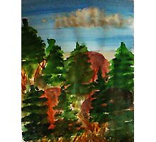 Amongst the pine trees, watercolor Photographic Print