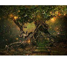 treescape Photographic Print