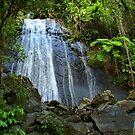 Yunque Waterfall by John Cruz