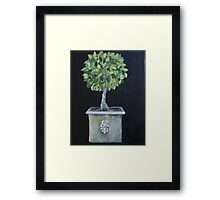 Topiary Tree Framed Print