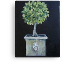 Topiary Tree Canvas Print