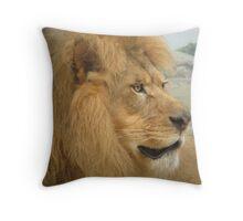 Lion at Milwaukee Zoo Throw Pillow