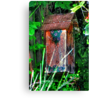 Little Abode Among the Vines Canvas Print