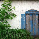Moody Blue by Elisabeth van Eyken