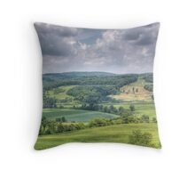 The Familiar Landscape of Home Throw Pillow