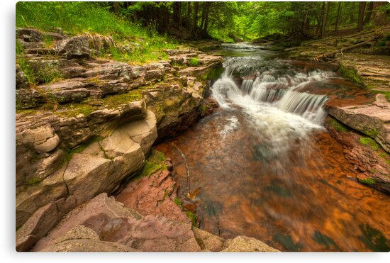 Pure Nature by JHRphotoART